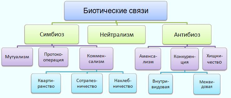Биотические связи